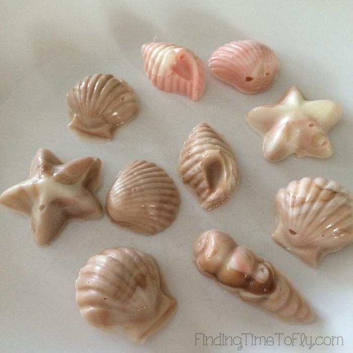 Chocolate-Seashells-On-Plate